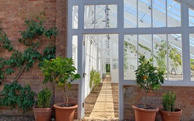 Choosing the Best Flooring for Your Conservatory